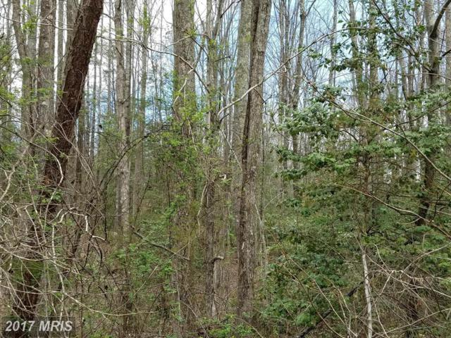 3601 Hidden Acres Way, Partlow, VA 22534 (#SP9506964) :: LoCoMusings