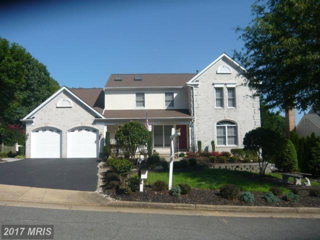 10307 Campbell Drive, Fredericksburg, VA 22408 (#SP9937654) :: Pearson Smith Realty