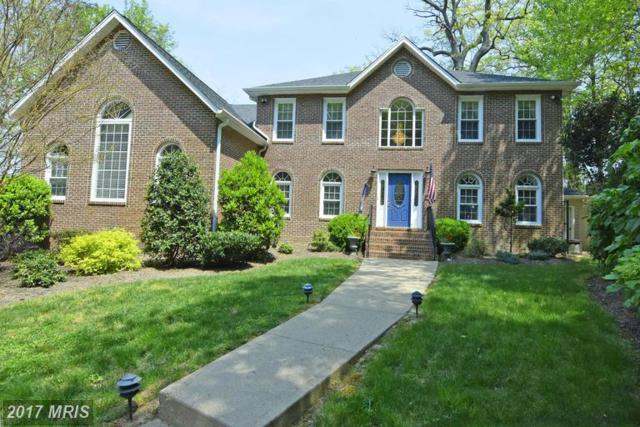 9 Potomac Overlook Lane, Stafford, VA 22554 (#ST8560882) :: LoCoMusings
