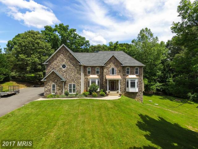 3 English Hills Drive, Fredericksburg, VA 22406 (#ST9951917) :: LoCoMusings