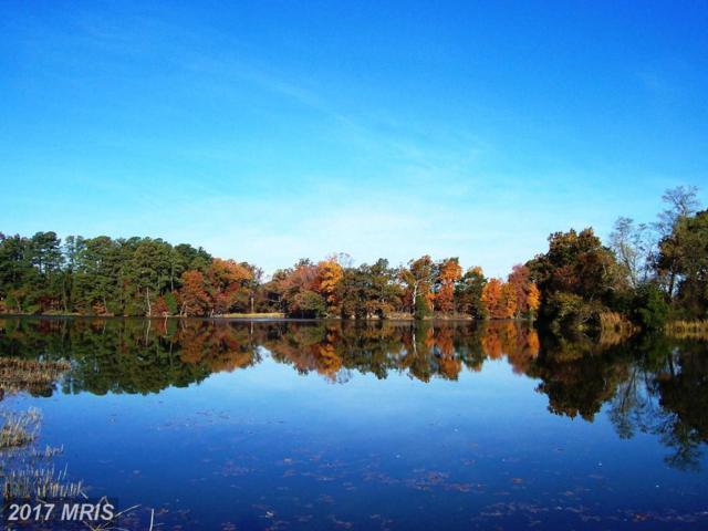 Villa Road, Easton, MD 21601 (#TA8047016) :: Pearson Smith Realty