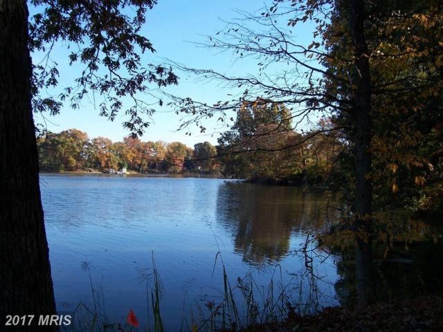 Villa Road, Easton, MD 21601 (#TA8047024) :: Pearson Smith Realty