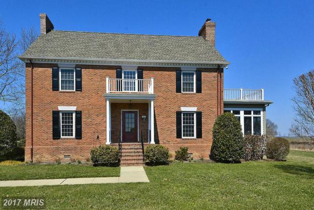 332 Perry Cabin Drive #34, Saint Michaels, MD 21663 (#TA8593465) :: LoCoMusings