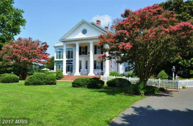 27448 Ashby Drive, Easton, MD 21601 (MLS #TA8705180) :: RE/MAX Coast and Country