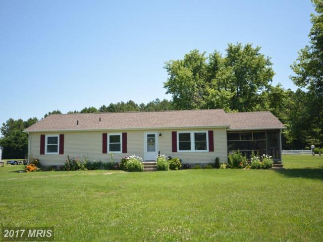 5415 Anchor Road, Tilghman, MD 21671 (#TA9853689) :: Pearson Smith Realty