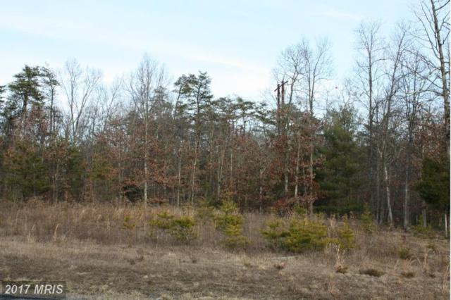 Oak Hill Court Lot 2, Stephens City, VA 22655 (#WR7999326) :: Pearson Smith Realty