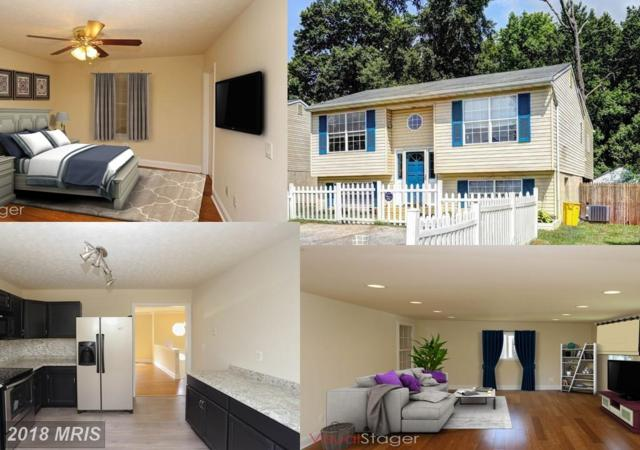 608 Waterview Drive, Orchard Beach, MD 21226 (#AA10006942) :: Pearson Smith Realty