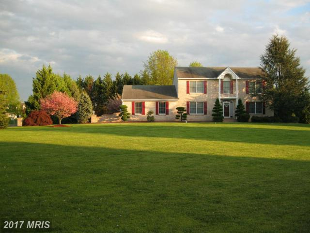 140 Brookview Loop, Elkton, MD 21921 (#CC9714268) :: Pearson Smith Realty