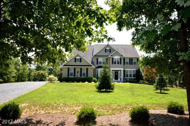201 Hammack Lane, Winchester, VA 22602 (#FV9525885) :: LoCoMusings