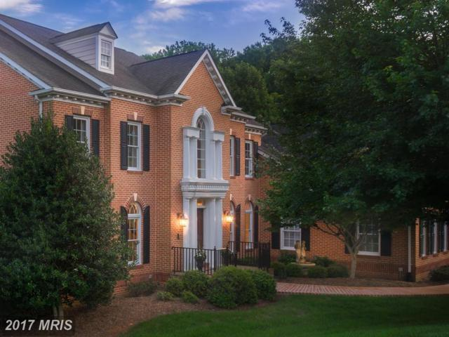 350 Sinegar Place, Great Falls, VA 22066 (#FX9908723) :: Pearson Smith Realty
