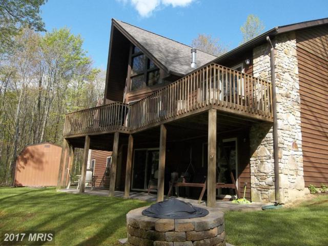 458 Moonlight Drive, Grantsville, MD 21536 (#GA9663710) :: Pearson Smith Realty
