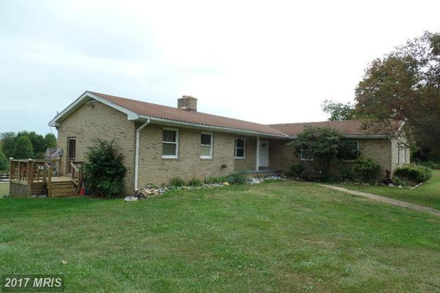 13210 Leetown Road, Kearneysville, WV 25430 (#JF8471048) :: LoCoMusings