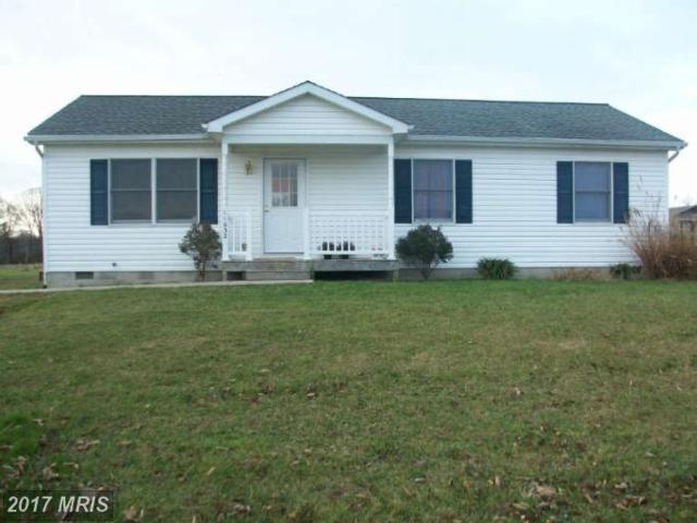 24990 Heather Lane, Worton, MD 21678 (#KE7982352) :: Pearson Smith Realty