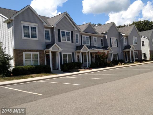 Lake Front Drive, Mineral, VA 23117 (#LA8522274) :: Pearson Smith Realty