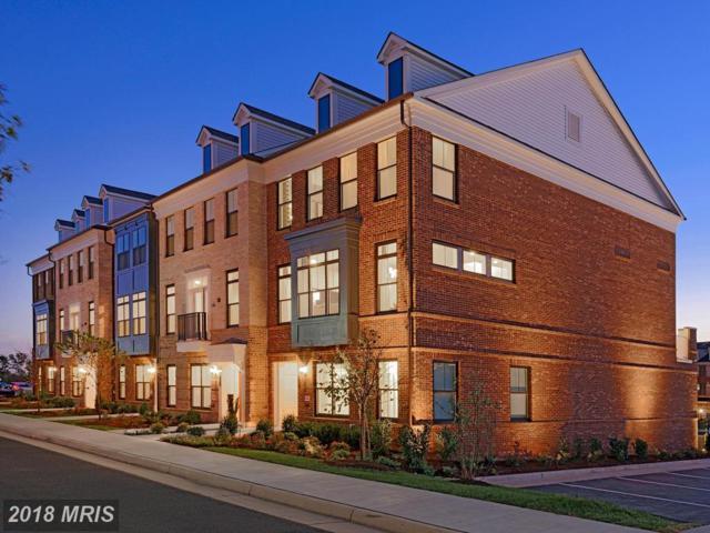 22551 Amendola Terrace #1, Ashburn, VA 20148 (#LO10111327) :: LoCoMusings