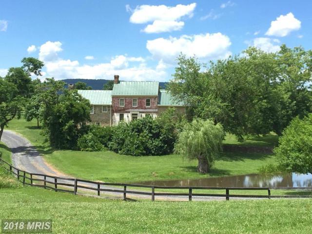 20597 Furr Road, Round Hill, VA 20141 (#LO8663024) :: LoCoMusings
