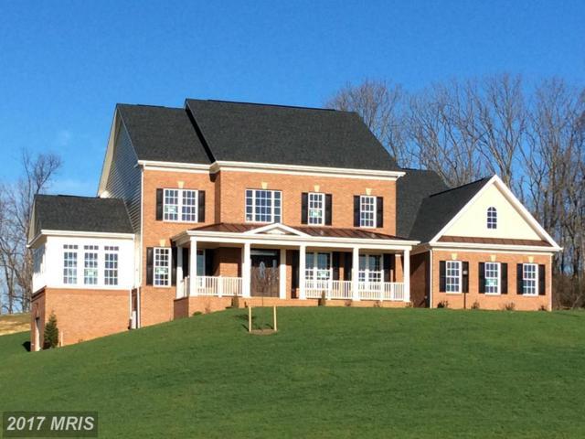15921 Emerson Manor Court, Hamilton, VA 20158 (#LO9805529) :: LoCoMusings