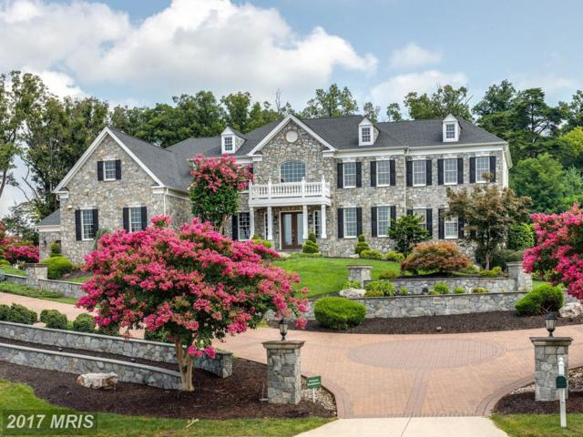 19946 Belmont Station Drive, Ashburn, VA 20147 (#LO9883278) :: Pearson Smith Realty