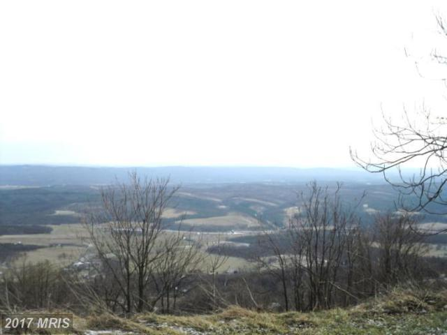 LOT A10 Waxler Road, Keyser, WV 26726 (#MI7758876) :: Pearson Smith Realty