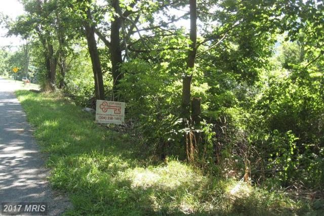 Laurel Avenue, Berkeley Springs, WV 25411 (#MO8006035) :: LoCoMusings