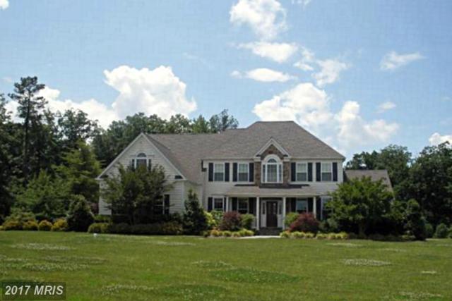 22147 Hanover Woods Court, Leonardtown, MD 20650 (#SM9733176) :: LoCoMusings