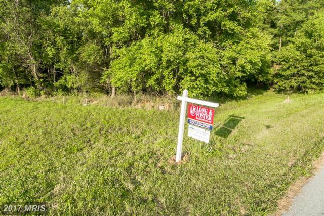 8302 Prophet Acres Road, Fairplay, MD 21733 (#WA7151015) :: Pearson Smith Realty