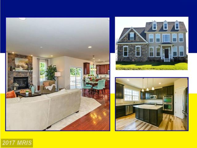 3161 Arundel On The Bay Road, Annapolis, MD 21403 (#AA9617652) :: Pearson Smith Realty