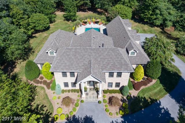 10 Spring Forest Court, Owings Mills, MD 21117 (#BC9749050) :: LoCoMusings