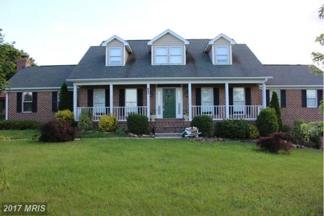 423 Heavenly Acres Ridge, Mercersburg, PA 17236 (#FU9575246) :: Pearson Smith Realty