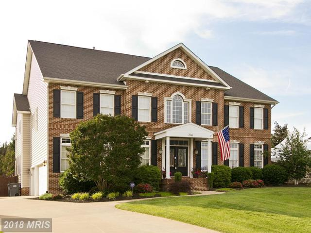 236 Fairfield Drive, Winchester, VA 22602 (#FV10188728) :: The Gus Anthony Team
