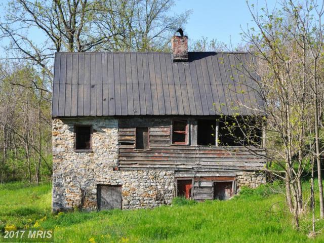 104 Stonebrook Road, Winchester, VA 22602 (#FV7422302) :: Pearson Smith Realty
