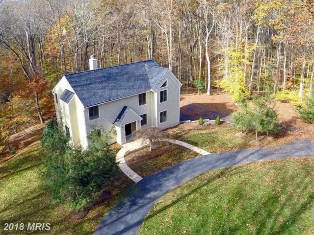 10714 Milkweed Drive, Great Falls, VA 22066 (#FX10061406) :: Great Falls Great Homes