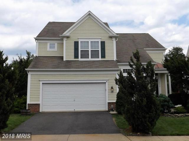 5354 Sammie Kay Lane, Centreville, VA 20120 (#FX10276196) :: Bob Lucido Team of Keller Williams Integrity