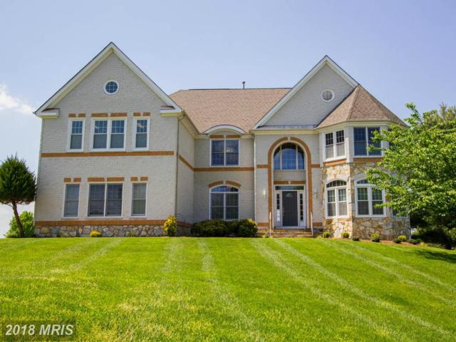 11436 Woolington Road, Great Falls, VA 22066 (#FX9939604) :: The Greg Wells Team