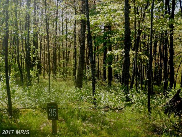 Winding Estates Drive, McHenry, MD 21541 (#GA8561878) :: Pearson Smith Realty