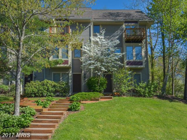 4 Lakeview Court, McHenry, MD 21541 (#GA9514546) :: LoCoMusings