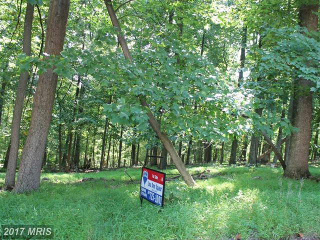 Adelaide Circle, Harpers Ferry, WV 25425 (#JF8446831) :: Pearson Smith Realty