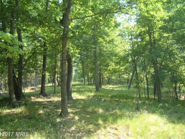 Pinepointe Drive, Keyser, WV 26726 (#MI7960686) :: LoCoMusings