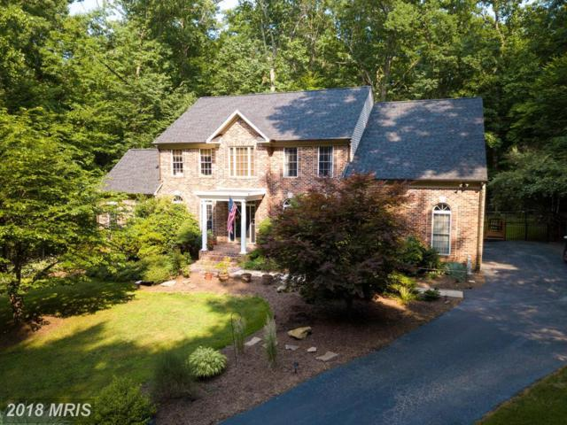 6719 Highpoint Court, Manassas, VA 20112 (#PW10277624) :: Bob Lucido Team of Keller Williams Integrity