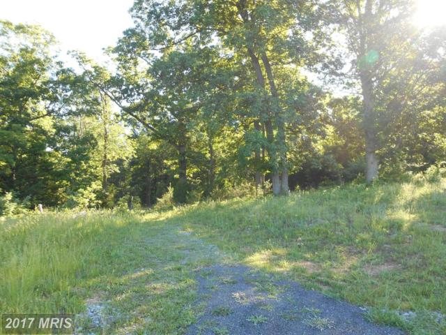 LOT 33 Savannah Drive, Strasburg, VA 22657 (#SH8278336) :: The Gus Anthony Team