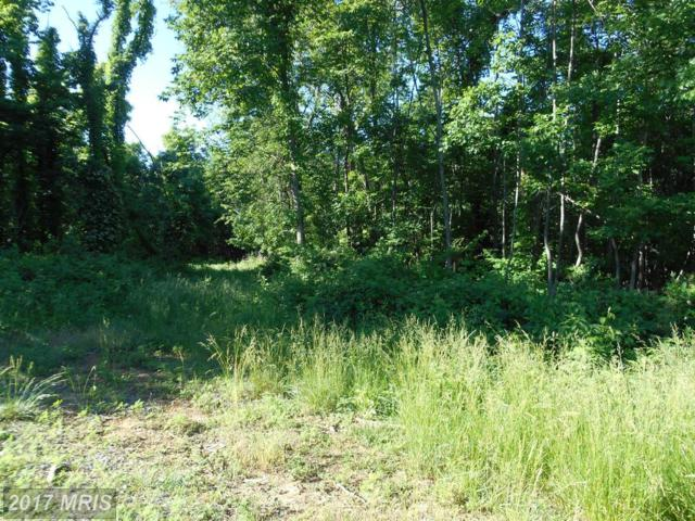 LOT 63 Savannah Drive, Strasburg, VA 22657 (#SH8278356) :: The Gus Anthony Team