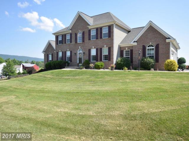 97 Junction Overlook, Strasburg, VA 22657 (#SH9976506) :: Pearson Smith Realty
