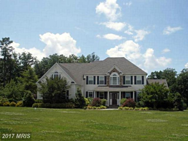 22147 Hanover Woods Court, Leonardtown, MD 20650 (#SM9733176) :: Pearson Smith Realty