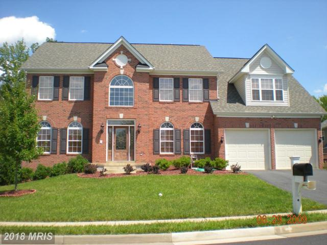 Monticello Drive, Stafford, VA 22554 (#ST9887879) :: AJ Team Realty