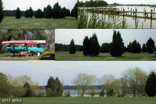 Deep Harbour Farm Lot# 10 Road, Sherwood, MD 21665 (#TA7287104) :: LoCoMusings