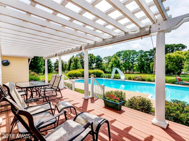 26617 Arcadia Shores Road, Easton, MD 21601 (#TA9893108) :: SURE Sales Group