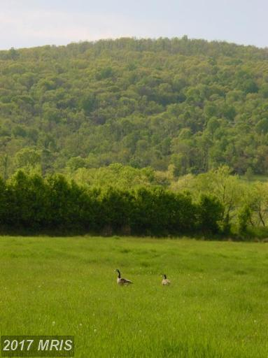 Ridgeside Road, Bluemont, VA 20135 (#LO7111017) :: Pearson Smith Realty