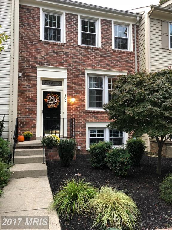 809 Chestnut Brook Court, Chestnut Hill Cove, MD 21226 (#AA10081675) :: LoCoMusings