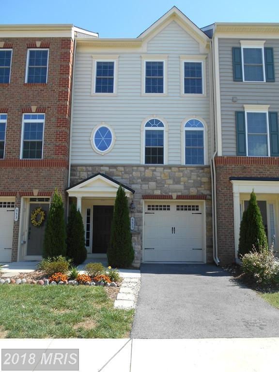 551 Deep Creek View, Annapolis, MD 21409 (#AA10137562) :: Pearson Smith Realty