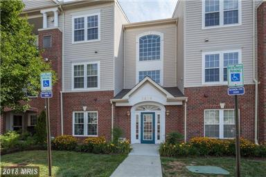 2498 Amber Orchard Court E #201, Odenton, MD 21113 (#AA10162733) :: The Gus Anthony Team